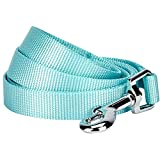 Blueberry Pet Essentials 21 Colors Durable Classic Dog Leash 5 ft x 3/4', Mint Blue, Medium, Basic Nylon Leashes for Dogs