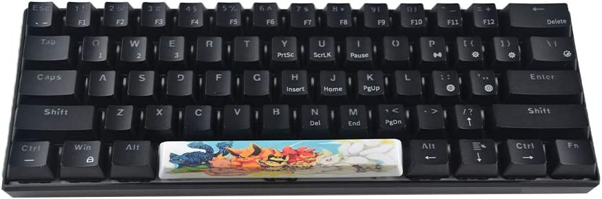 RICKONS Keycap 6.25u Space Bar for Cherry Switch Mechanical Gaming Keyboard with Key Puller (Kyubi)