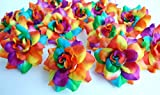 (50) Silk Rainbow Tone Roses Flower Head - 1.75' - Artificial Flowers Heads Fabric Floral Supplies Wholesale Lot for Wedding Flowers Accessories Make Bridal Hair Clips Headbands Dress