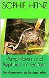 Amphibien und Reptilien im Garten: Der Gartenteich als Naturparadies