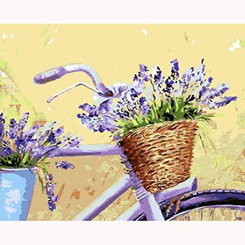 LTYHDONG Fahrradkorb DIY Erwachsene Malen Nach Zahlen Kinder Paint by Numbers Leinwand Ölgemälde Creative Spielzeug Kits Home Art Dekor 40 * 50 cm (Rahmenlos)