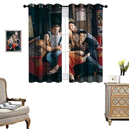 DRAGON VINES Kids Bedroom Curtains Friends Sitting On The Sofa Thermal Insulated Drapery Drapes for Living Room Set of 2 Panels W72 x L62