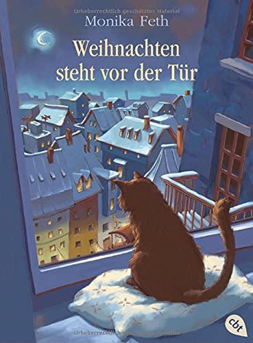 Weihnachten steht vor der Tür (Die Kater-Reihe, Band 1)