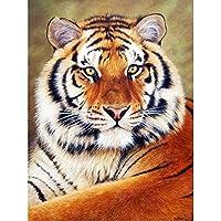 5DDiyダイヤモンド絵画タイガーフルスクエアダイヤモンド刺繡動物ラインストーン画像モザイク家の装飾ギフト