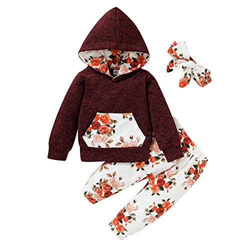 Conjunto de roupas para bebês meninas com capuz e calça floral para inverno de 0 a 24 meses, Wine Red, 6-12 Months