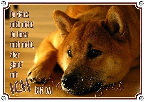 Petsigns Hundeschild - Shiba Inu - stabiles Metallschild mit Fotodruck - rostfrei, DIN A5