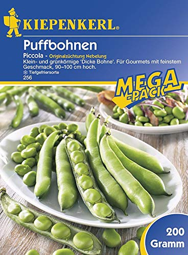 Puffbohnen Grosse Bohnen Piccola grünkernig 200g