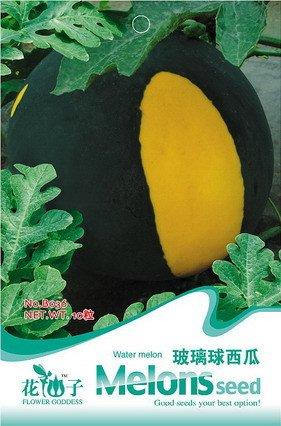 Livraison gratuite 3 Packs 30 de boule en verre Watermelon Seed B036