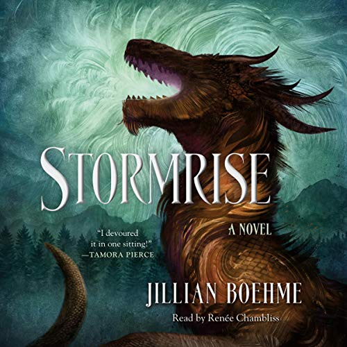 Stormrise audiobook cover art