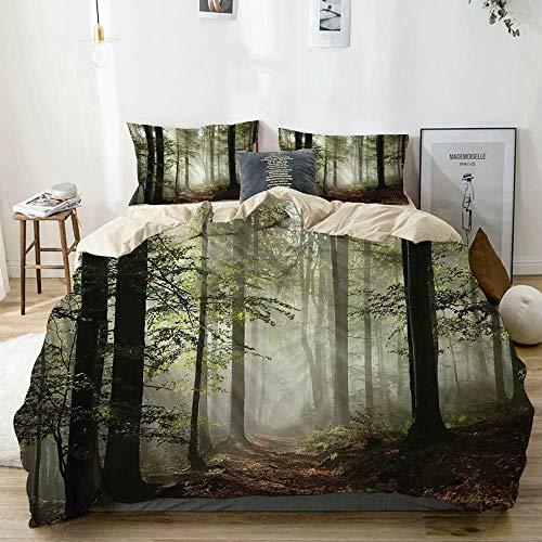 Juego de funda nórdica beige, ruta del bosque oscuro rodeada de niebla bajo el sol durante el día en la madre tierra, juego de cama decorativo de 3 piezas con 2 fundas de almohada fácil cuidado antial