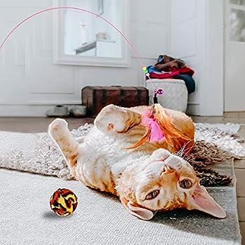 GOLDGE Jouets Chat Interactif, 16 pièces Jouets Chat,Souris,Balles,Baguettes de Plumes,pour Kitty interactifs