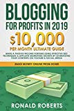 Blogging for Profits in 2019: 10,000/month ultimate guide – Make a Passive Income Fortune using Effective Seo Techniques & Affiliate Marketing Secrets ... on YouTube & Social Media (Make Money Online)