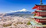 Poster-Bild 50 x 30 cm: Mt. Fuji with Chureito Pagoda in