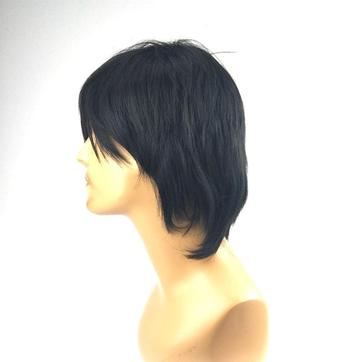 聖歌メディア大脳Summerys 斜め前髪付きメンズショートストレートヘアシルクケミカルファイバーウィッグ