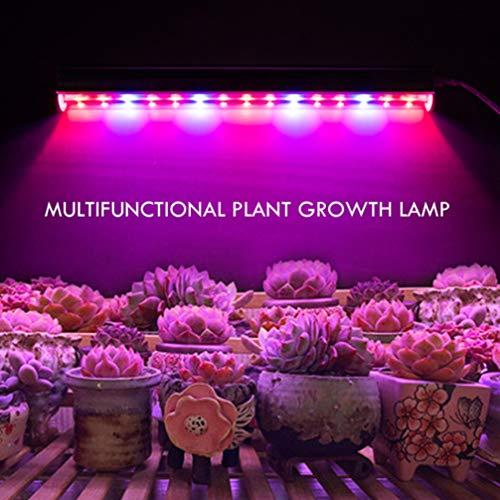 Mobestech Luces de Crecimiento Led Barra de Luz de Crecimiento de Planta de Espectro Completo Tubos de Luz de Crecimiento para Plantas de Interior Siembra de Flores en Maceta con Cable de Interruptor