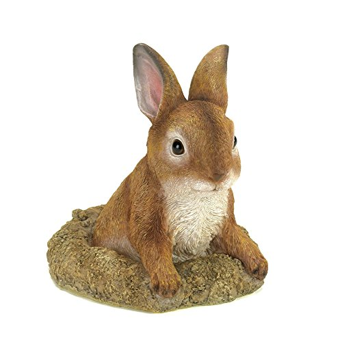 Köhler 10016128 15,9 cm Curious Bunny Décor de Jardin