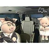 「派遣型風俗のドライバー」