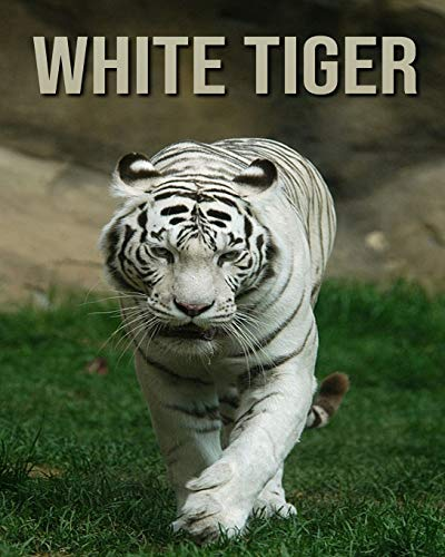 White Tiger: Children's Book An Amazing Animal Picture Book about White Tiger for Kids