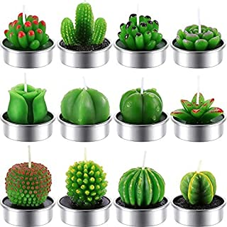 12 Pieces Cactus Tealight Candles Handmade Delicate Succulent Cactus Candles for Party Wedding Spa Home Decoration Gifts (...