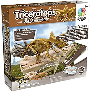 Fossil Excavations Dinosaures Triceratops Science4you