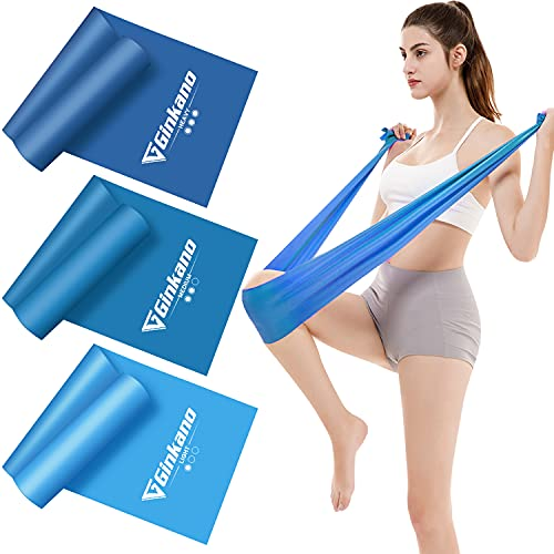 Haquno Bandas Elasticas Fitness(3pcs), 1.5M Cintas Elasticas con 3 Niveles de Resistencia, Pilates, Crossfit, Estiramientos, Musculacion, Piernas, Brazos, Fuerza
