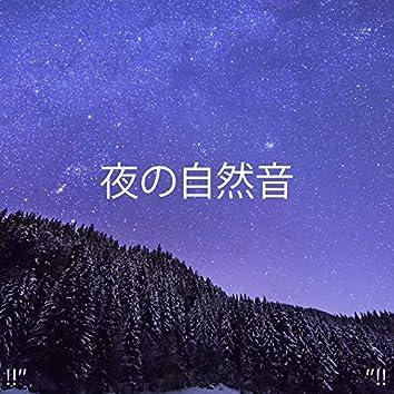 """!!"""" 夜の自然音 """"!!"""