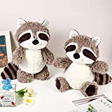 Raccoon Stuffed Animal 2 Pieces Small Raccoon Plush Animal Cute Stuffed Raccoon Brown Raccoon Plushie Woodland Raccoon Plush Toy Soft Plush Animal Doll for Babies Children Kids Girls Boys, 10 Inches