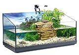 *Tetra Repto Aqua Set, Komplettset (für Wasserschildkröten mit Innenfilter, Heizer, LED-Beleuchtung und Deko-Insel mit integriertem Futterplatz, ideal zur Aufzucht von Baby- und jungen Schildkröten)