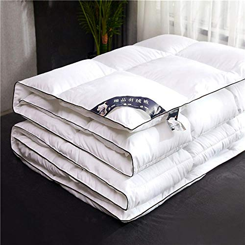CHOU DAN Twin Duvet Insert,Down Duvet 95 White Goose Down Winter Quilt Thickened Spring And Autumn Student Quilt-8_220x240cm 4000g