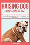 RAISING DOG FOR BEGINNERS 2021: A Step-By-Step Practical Guide To Raising Healthy Dog From Puppyhood To Adulthood