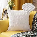 MIULEE Funda Cojin Fundas de Almohada Granulado Grande de Sofa Suave Comodo Color Solido Duradero Decorativa Fundas Poliéster Decoracion para Sofa Habitacion Dormitorio 1 Pieza 60X60cm Blanco