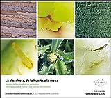 la alcachofa, de La Huerta A La Mesa.(Recetas de Moisés Martínez y estudios Sobre El Paisaje, El Cultivo y sus Valores nutricionales): 5 (Gastronomía)