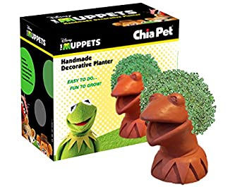 Chia Pet Kermit The Frog Decorative Pottery Planter Easy to Do and Fun to Grow Novelty Gift Perfect for Any Occasion
