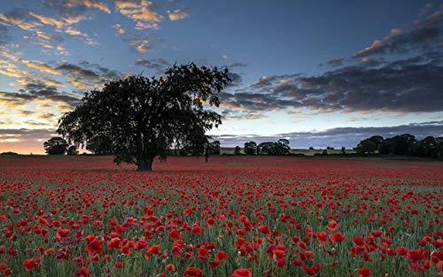 lxlwxh541 Diamondpainting Poppies Tree Landscape Arts Craft Home 40X50Cm Round Geschenk