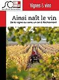 Ainsi naît le vin: De la vigne au verre, un an à Pécharmant