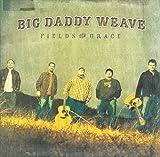 Songtexte von Big Daddy Weave - Fields of Grace
