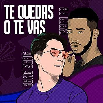 Te Quedas O Te Vas (feat. Eyren PR)