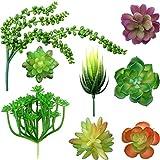 8 Plantas Suculentas Artificiales Largas, Plantas Realistas sin Manchas Selección Suculenta de Textura Falsa para Arreglo Floral Interior Exterior Decorar Hogar y Paisaje DIY (Superficie Ordinaria)