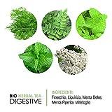 Zoom IMG-2 vitativ digestive tisana biologica alle