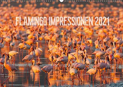 Flamingo Impressionen 2021 (Wandkalender 2021 DIN A2 quer)