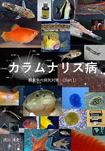 Columnaris disease Kansyougyonobyoukitaisaku (Japanese Edition)