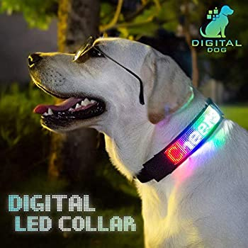 PetLuv Digital Dog Interactive Programmable Bluetooth Scrolling Light Up Reflective LED Dog Collar Illuminated for Safety & Nighttime Multi-Colored Personalized Text & Graphics App Controlled