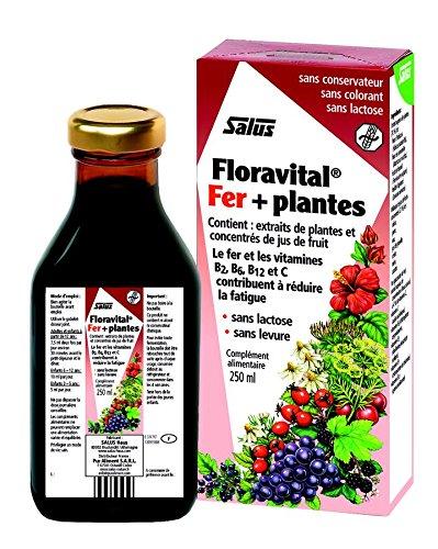 Salus - Floradix - Floravital Sans Gluten - Flacon 250 Ml