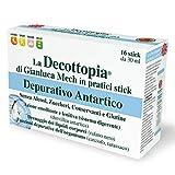 Decopocket Depur Antart16x30ml