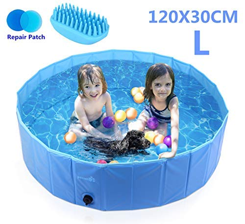Pecute Dog Pool