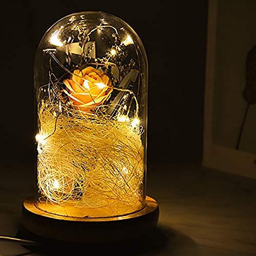 KIPIDA Kit de regalo para el día de San Valentín, rosa de la Bella y la Bestia, lámpara LED artificial, lámpara para el día de la madre, mujer, novia, aniversario, boda, cumpleaños, regalo de Navidad