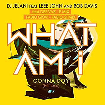 What Am I Gonna Do? (feat. Leee John and Rob Davis) [Remixes]
