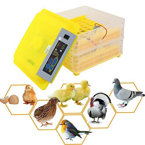 XuanYue Huevo Incubadora Automático 112 Huevo Digital Incubadoras Torneado de Pollo Incorporado Pantalla Hatcher para Pollos Patos Ganso Aves de Corral Paloma