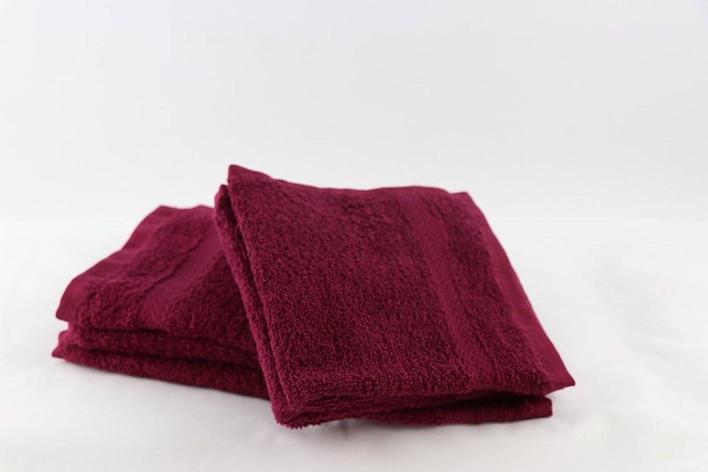 テメリティトラフぼんやりした高級ホテル& Spa品質Washcloths?–?Set of 6?–?13?