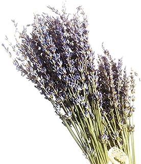 Ramo de flores secas de lavanda natural de Povkeever, 400